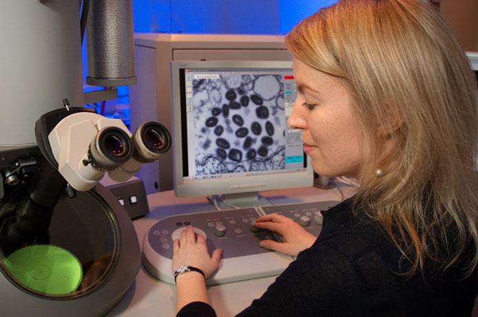 cienctificamicroscopio